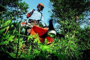 Servicios Lusal - Jardinería y Paisajismo